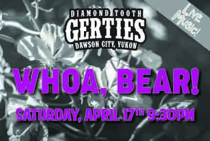 Whoa, Bear! Live Music Diamond Tooth Gerties Dawson City