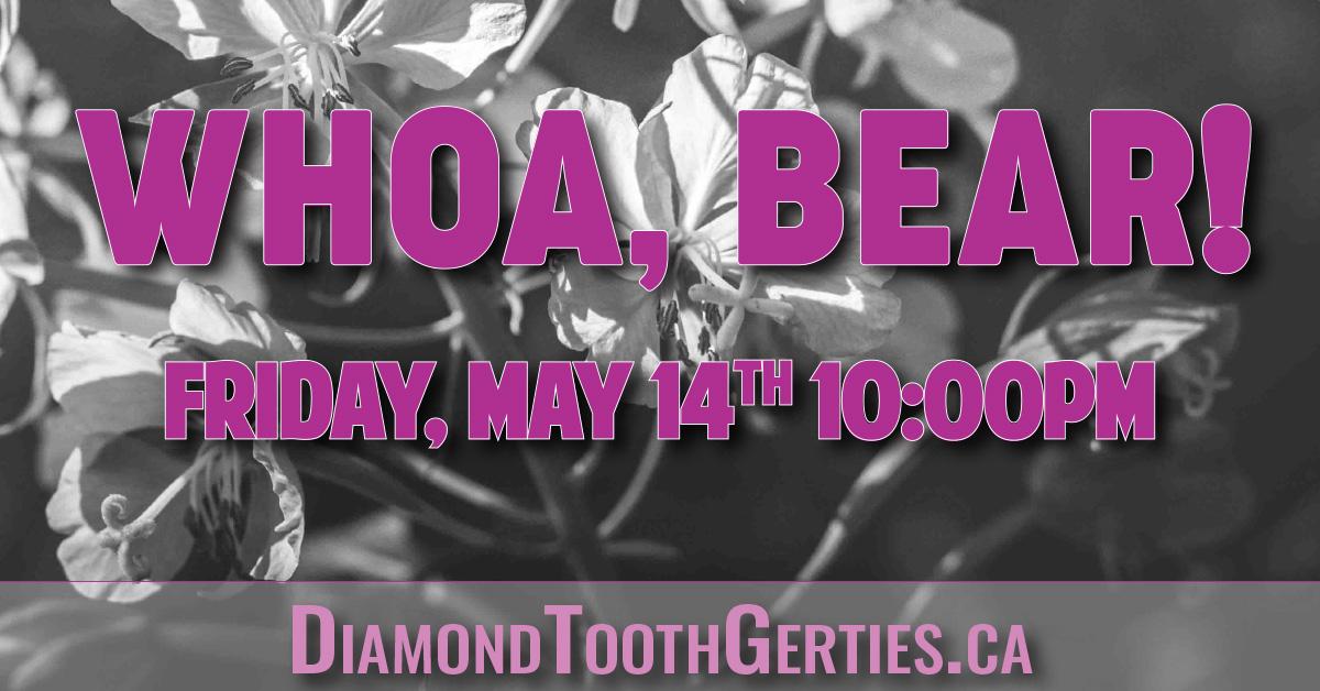 Live music Whoa, Bear! Diamond Tooth Gerties